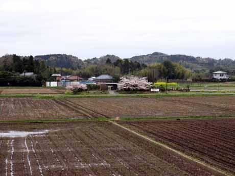 上総川間前景