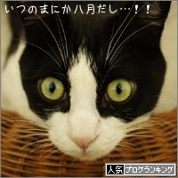 dai20150803_banner.jpg