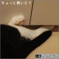 dai20150806_banner.jpg