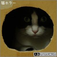 dai20150824_banner.jpg