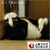 dai20150826_banner.jpg