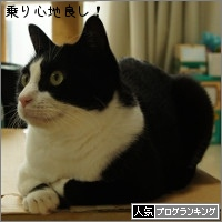 dai20150827_banner.jpg