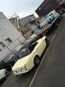 IMG_0517改