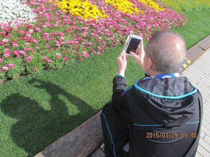 20150329flower05.jpg