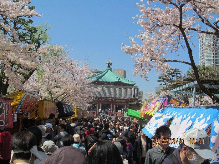 20150331shinobazu08.jpg