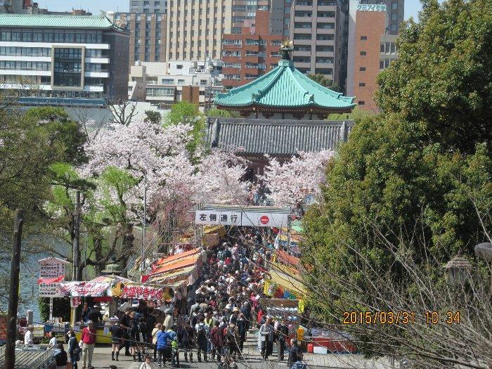 20150331shinobazu10.jpg