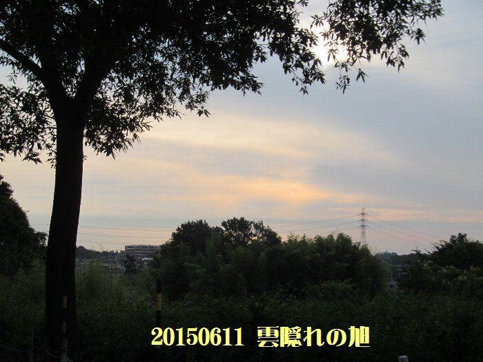 20150611tsuyuiri07.jpg