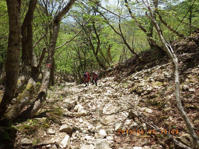 荒れた金糞峠直下の登山道