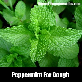 0430Peppermint_cough