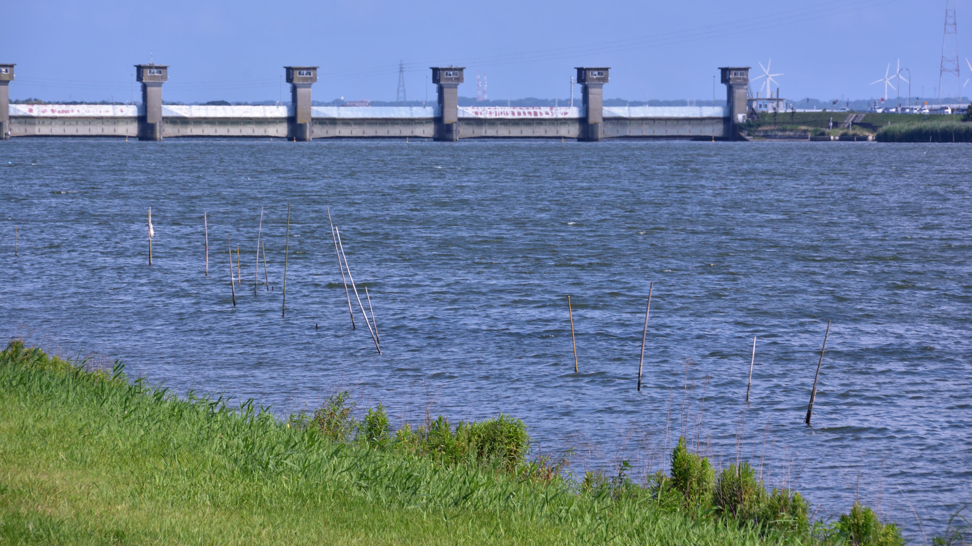 晴天、水門開放の常陸川