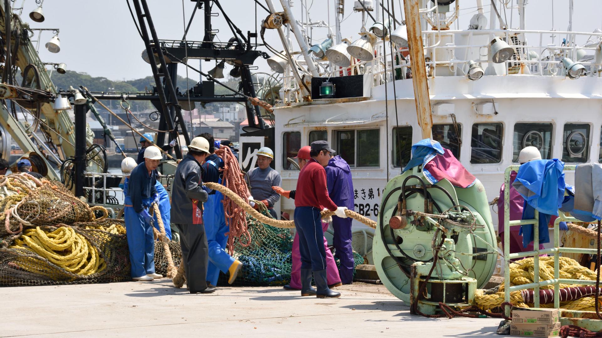 水揚げ後の漁獲網片付け