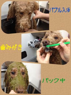 リンジー入浴_convert_20150122221954
