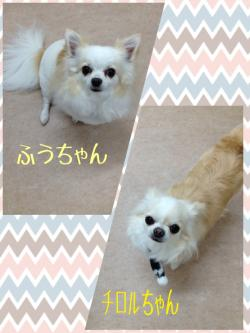 チロふう_convert_20150307230703