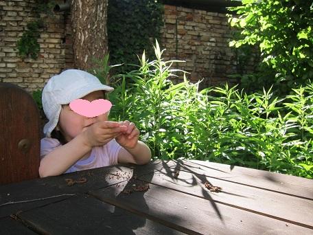 植物と戯れる長女
