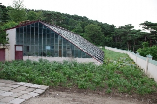 green house rason