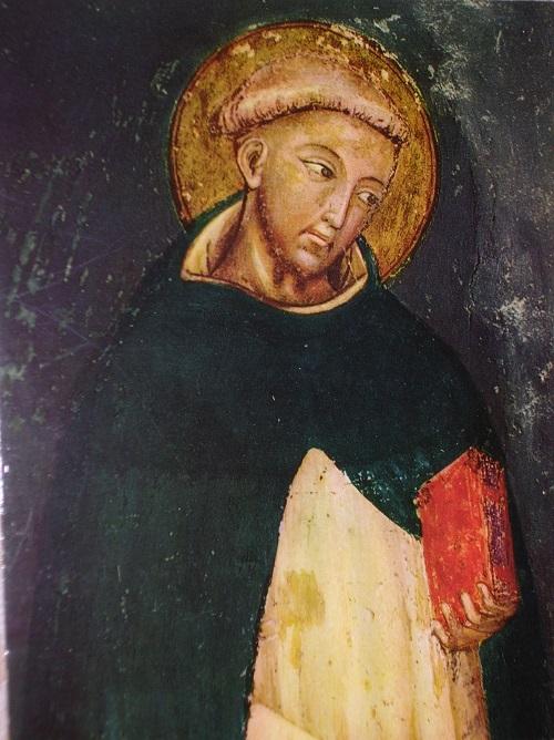 dominiko 3