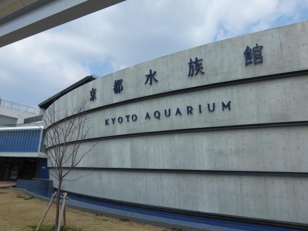 21水族館