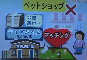 NHK週間ニュース深読み なぜ命は捨てられる