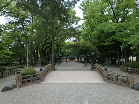 P5120004.jpg
