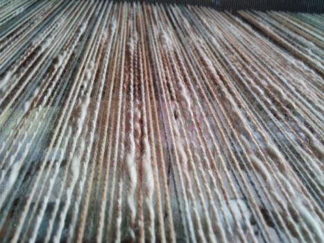 柿渋の経糸