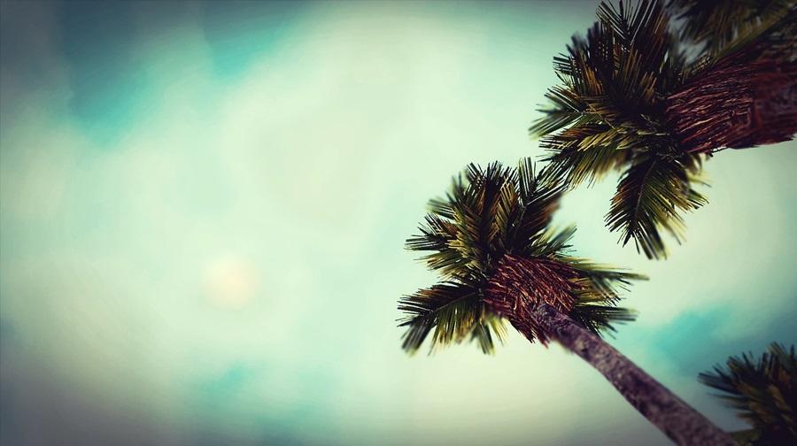 Screenshot-fc3731.jpg