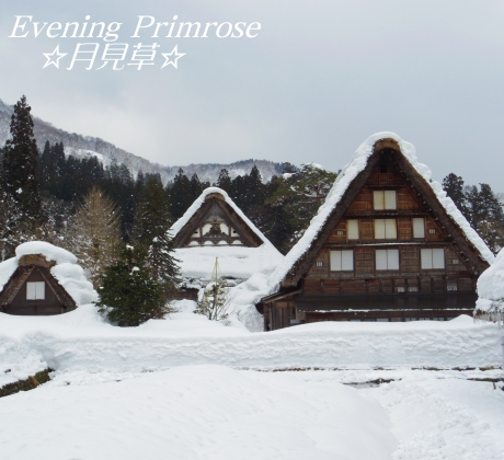 雪遊び01