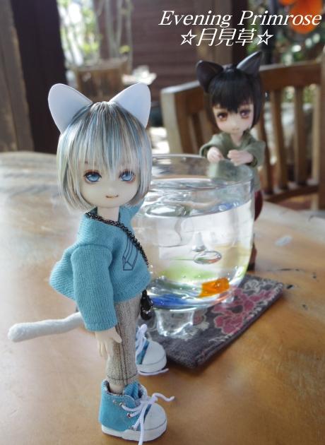 カフェ♪~tenth cup~02