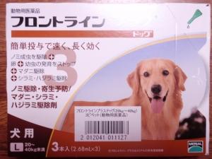 フロントラインプラス :エクステリア横浜(愛犬と過ごすお庭空間のご相談をお受けしています。)