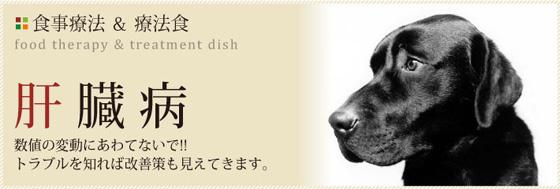 liver-title.jpg