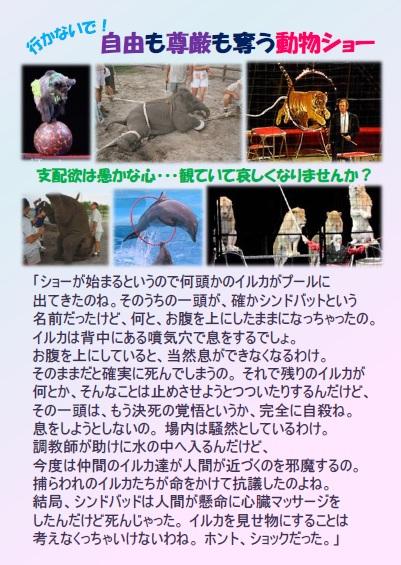 ARブック 5