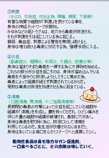ARブック 13