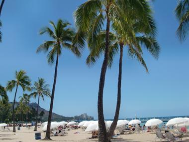 oahu-waikiki-beach_1.jpg