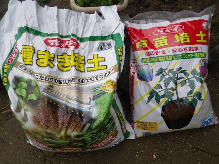 種蒔きの土15_03_29