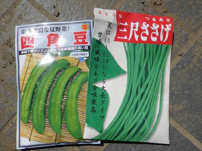 種蒔き3_15_05_17