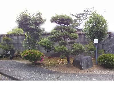 snap_fuku3282_201564204833.jpg