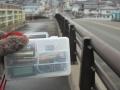 あらお 福島の今⑤-1