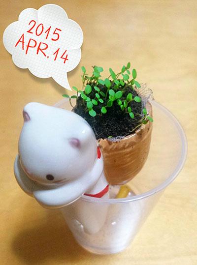 LINEcamera_share_2015-04-14-23-03-51.jpg
