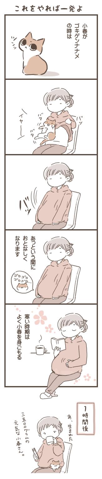 ippatsu.png