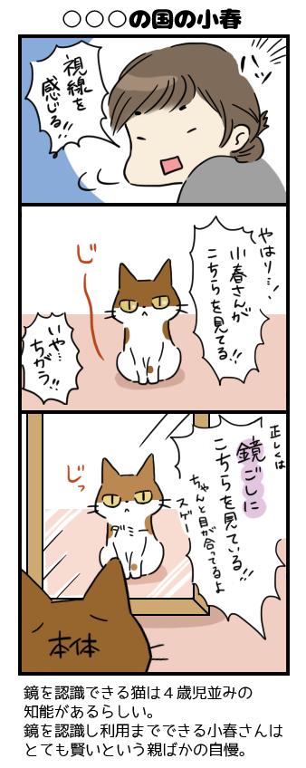 kagami.png