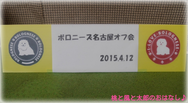 20150416115144a13.jpg