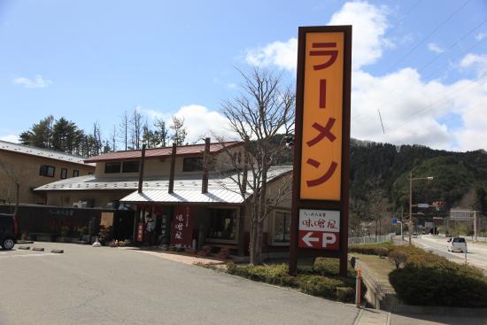 滝桜 (44)滝桜