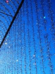 箱根ガラスの森美術館 (3)