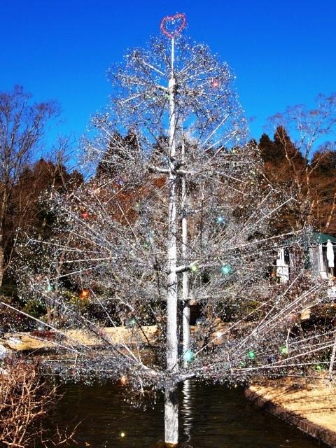 箱根ガラスの森美術館 (4)