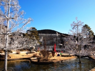 箱根ガラスの森美術館 (5)