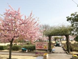 道の駅めぬま (1)