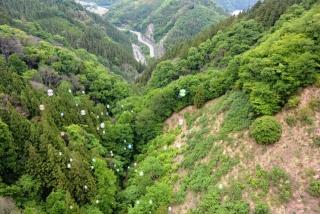 上野村 (9)