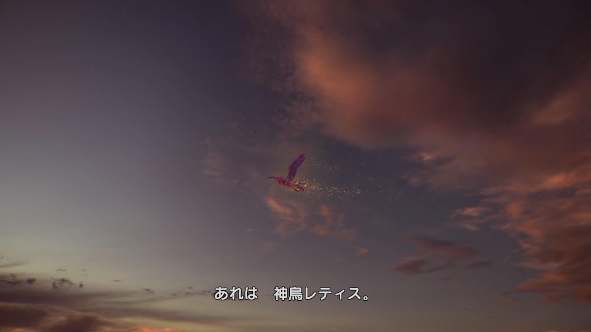 DQH_13_06.jpg