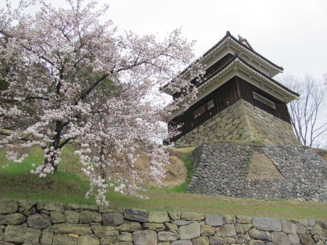 上田城桜C