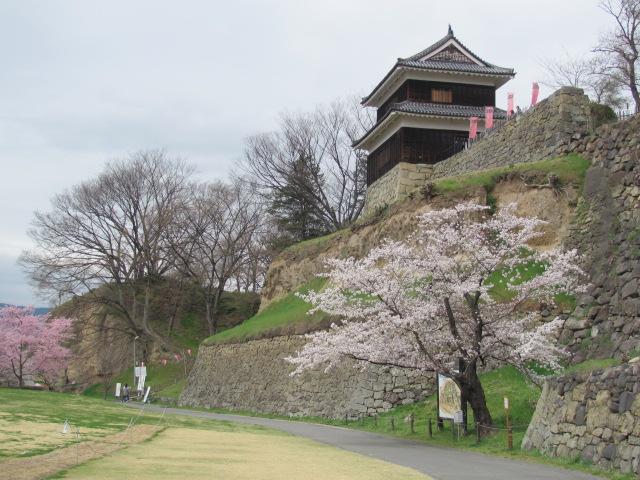 上田城桜D