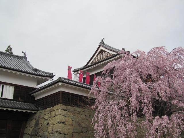 上田城桜H